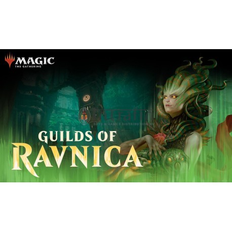 MTG Guilds of Ravnica Booster display (36) English