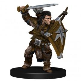 Pathfinder Battles: Iconic Heroes Evolved