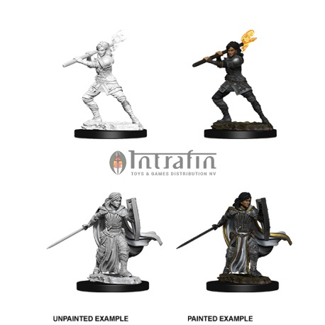 D&D Nolzur's Marvelous Miniatures - Female Human Paladin