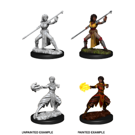 D&D Nolzur's Marvelous Miniatures - Female Half-Elf Monk