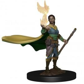 D&D Premium Figures: Elf Female Druid