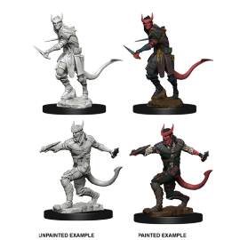 D&D® Nolzur's Marvelous Miniatures: Tiefling Male Rogue
