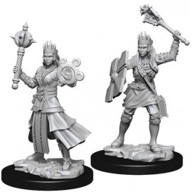 D&D Nolzur's Marvelous Miniatures - Female Human Cleric