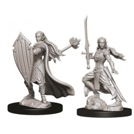D&D Nolzur's Marvelous Miniatures - Female Elf Paladin
