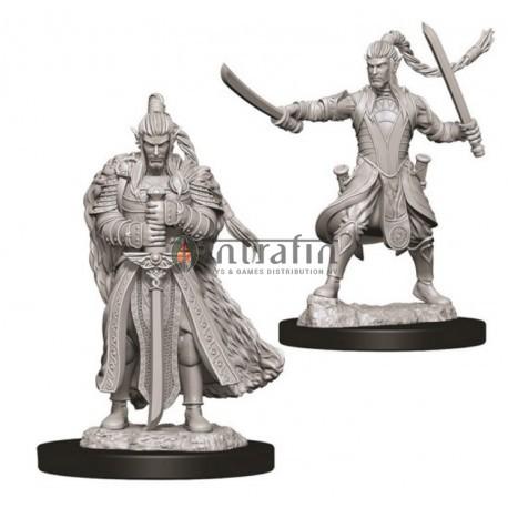 D&D Nolzur's Marvelous Miniatures - Male Elf Paladin