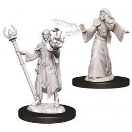 D&D Nolzur's Marvelous Miniatures -Male Elf Wizard