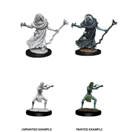 D&D Nolzur's Marvelous Miniatures: Sea Hag & Bheur Hag