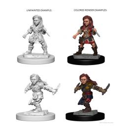 D&D Nolzurs Marvelous Miniatures: Halfling Female Rogue