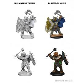 D&D Nolzur's Marvelous Unpainted: Dragonborn Male Paladin