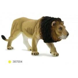 Lion MÔle
