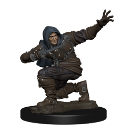 Pathfinder Battles: Premium Painted Figure - Human Rogue Male