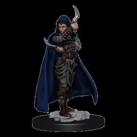 Pathfinder Battles: Premium Painted Figure - Human Rogue Female