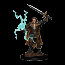 Pathfinder Battles: Premium Painted Figure - Human Cleric Male