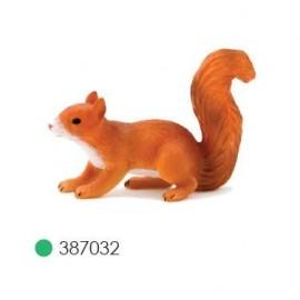 Red Squirrel Running