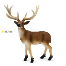 White Tailed Deer Stag