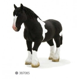 Clydesdale Black & White