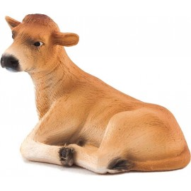 Jersey Calf Laying Down