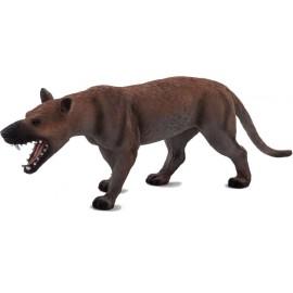 Hyaenodon Gigas