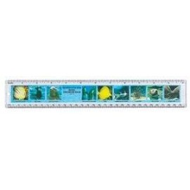 "12"" Safari Ruler Myst of the Deep"
