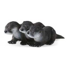 River Otter Babies