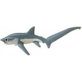 Tresher Shark