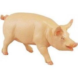 Classic Pig