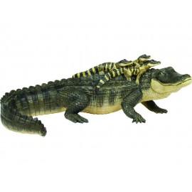 Incredible Creat Alligator and Babies