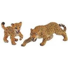 Leopard Adult