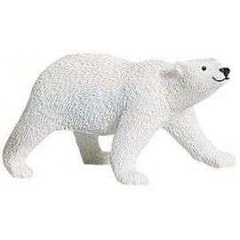 Polar Bear Adult