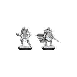 D&D Nolzur's Marvelous Miniatures - Dragonborn Female Fighter