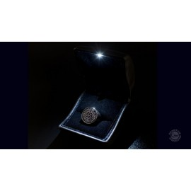 Star Trek - Into Darkness - Starfleet Academy Ring