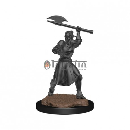 Critical Role Unpainted Miniatures: Half-Elf Echo Knight and Echo Female