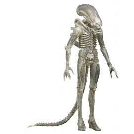 Aliens - 1/4 Scale Figure - Translucent Concept Alien